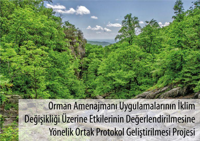 Orman Amenajmanı Uygulamalarının İklim Değişikliği Üzerine Etkilerinin Değerlendirilmesine Yönelik Ortak Protokol Geliştirilmesi Projesi