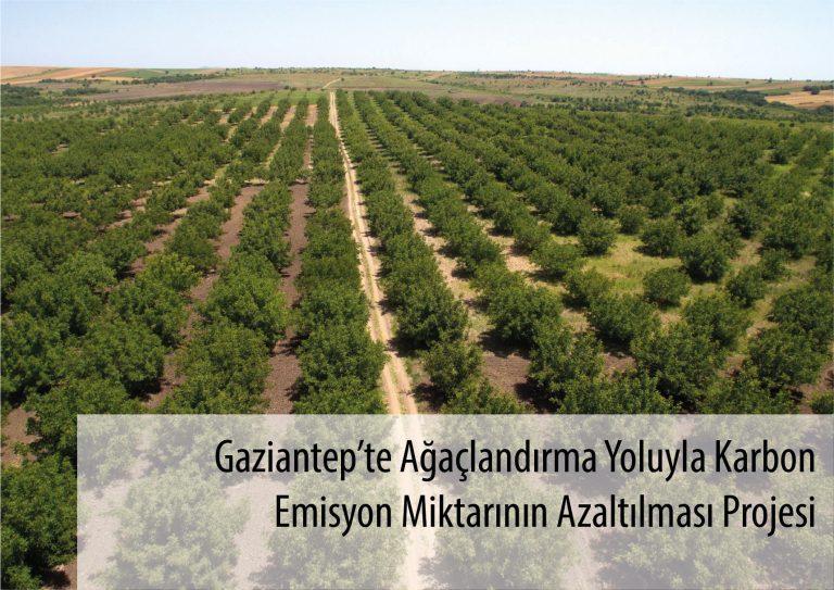 Gaziantep'te Ağaçlandırma Yoluyla Karbon Emisyon Miktarının Azaltılması Projesi